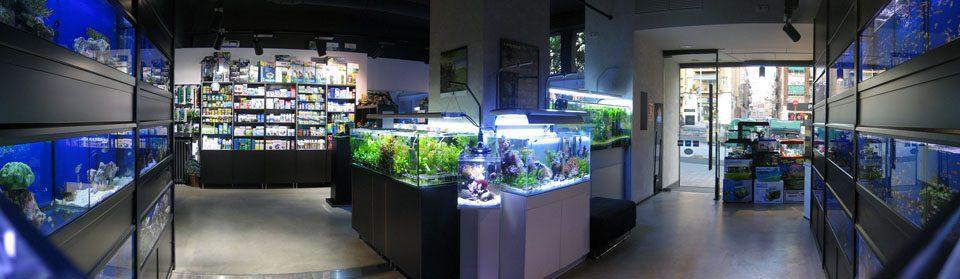 AQUAZEN - Especialistas en acuarios