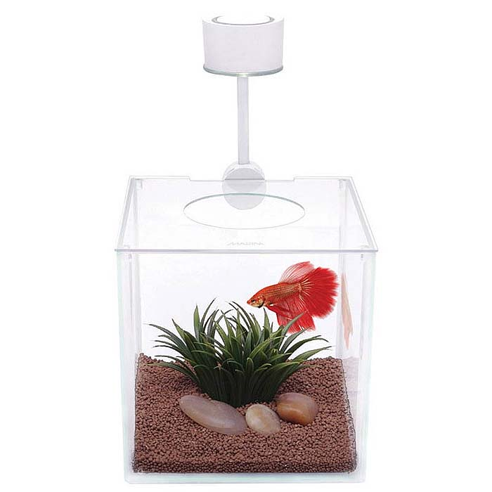 Acuario Marina Cubus Betta Kit