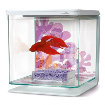 Marina Betta Kit Flower