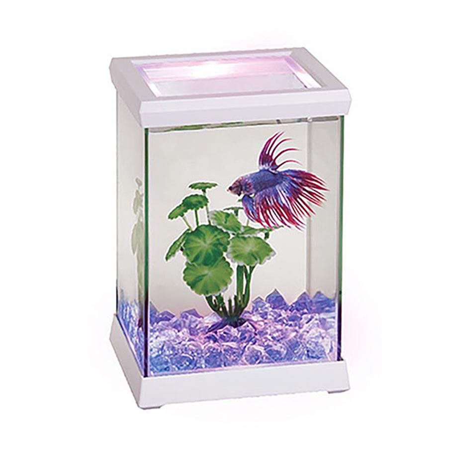 Kit Betta Space blanco