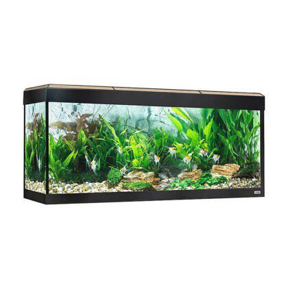 Acuario Fluval Roma 240 led bluetooth roble